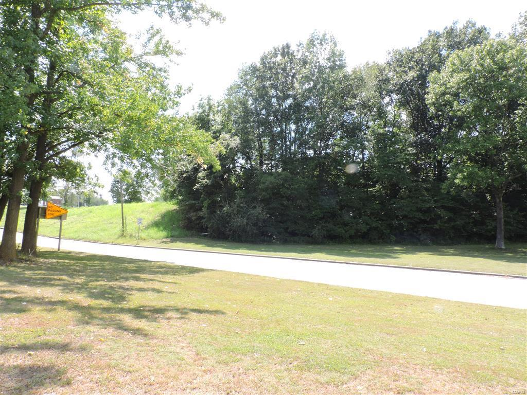 0 State Rt. 4 & Rt. 151 Property Photo - Ava, IL real estate listing