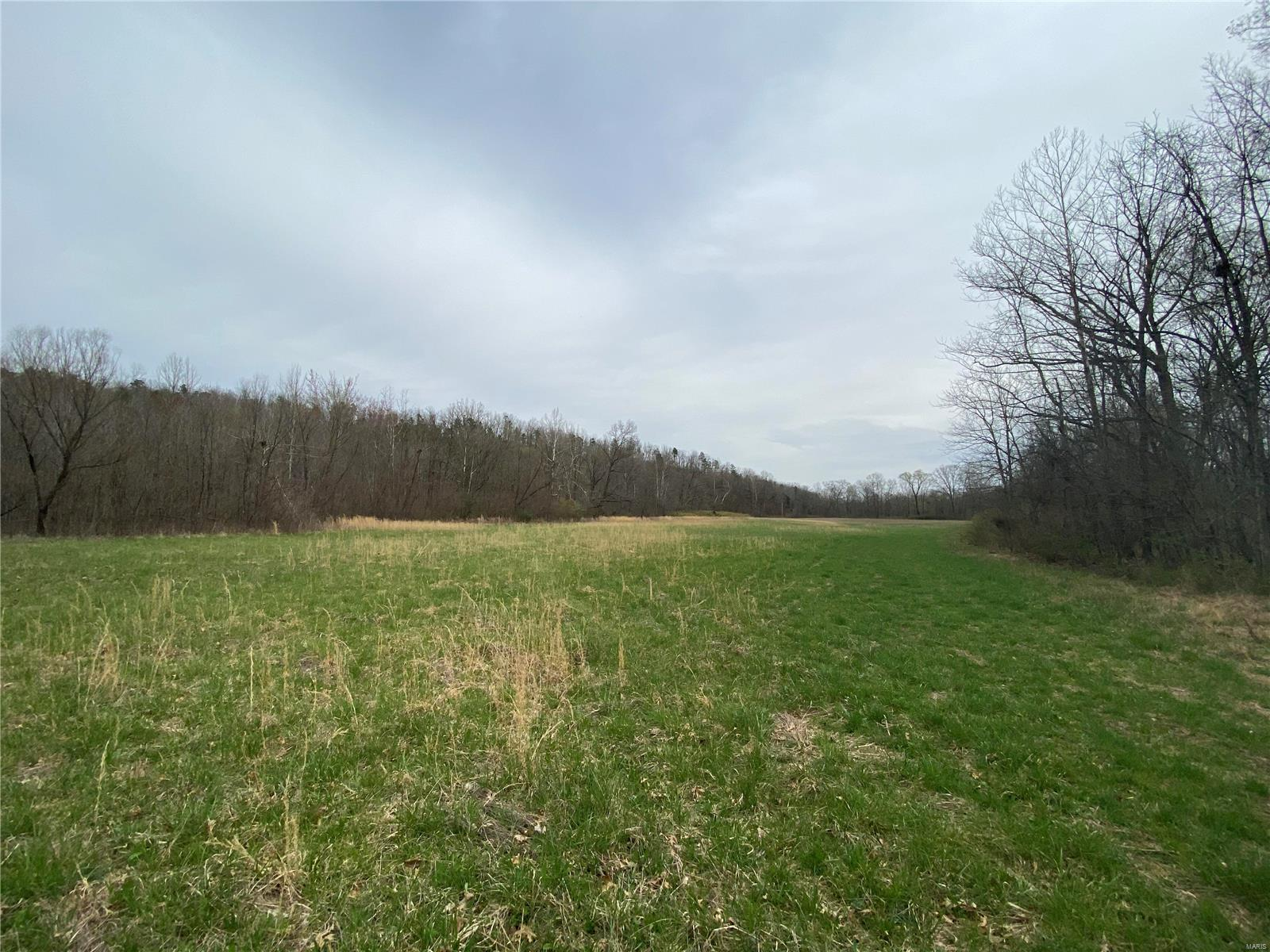 0 Co Rd 224 Property Photo - Hiram, MO real estate listing