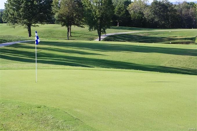 9530 Southern Belle Drive #Golf Course lot 43, Sec 15 Property Photo - Hillsboro, MO real estate listing