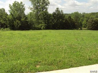 0 May Avenue Property Photo - Winfield, MO real estate listing