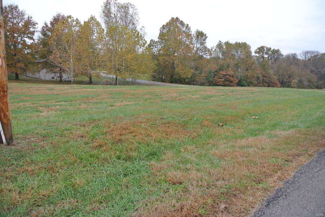 0 lot 18 Circle Drive Property Photo - St Mary, MO real estate listing