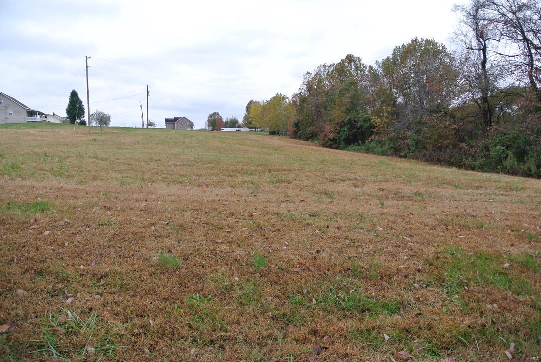 0 lot 20 Highway H Property Photo - St Mary, MO real estate listing