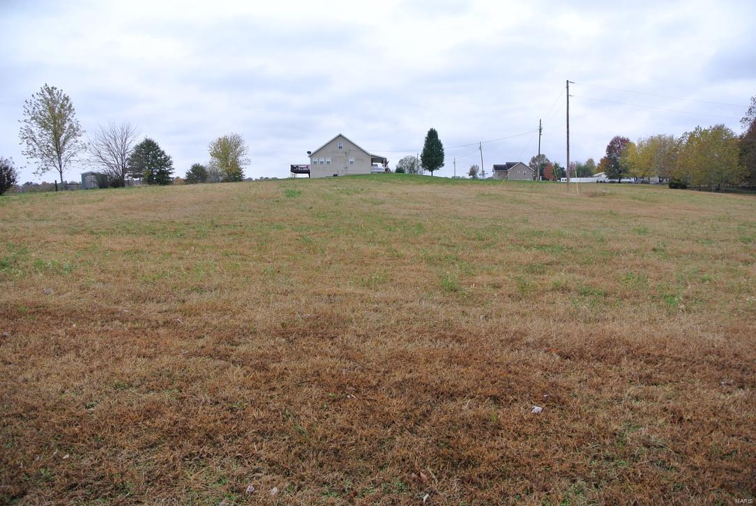 0 lot 21 Highway H Property Photo - St Mary, MO real estate listing