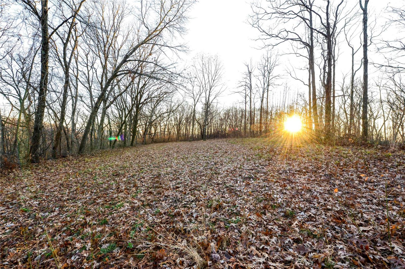 0 Page Branch Hollow Drive Property Photo - Elsberry, MO real estate listing