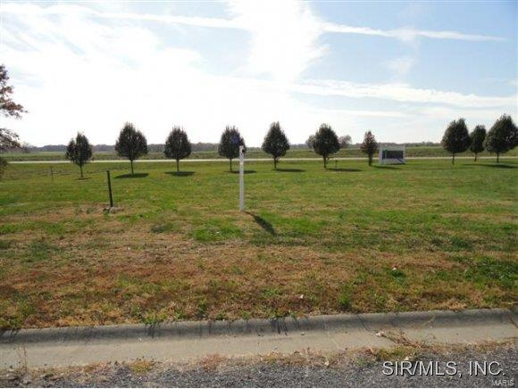 1000 REINHARDT Drive Property Photo - New Athens, IL real estate listing
