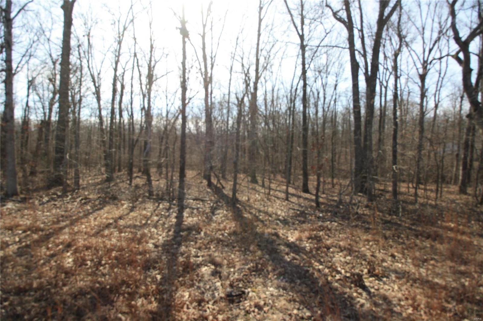 0 Lot 1 Holiday Hills Dev Property Photo - Wappapello, MO real estate listing