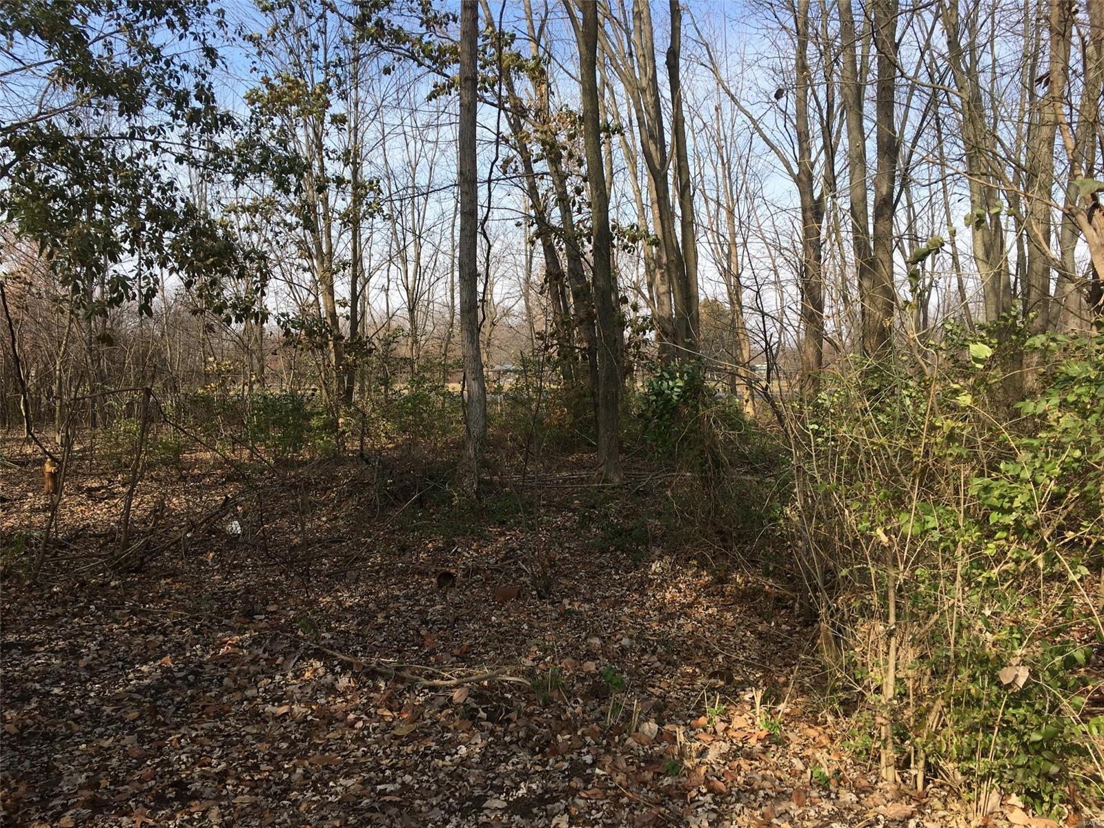 0 Virginia Avenue Property Photo - Mulberry Grove, IL real estate listing