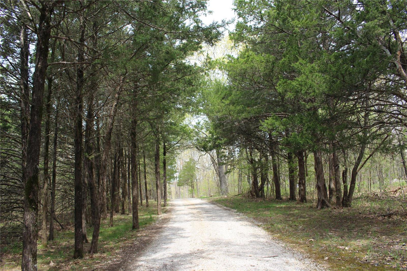 15 Cedar Grove Trail Property Photo - New Florence, MO real estate listing