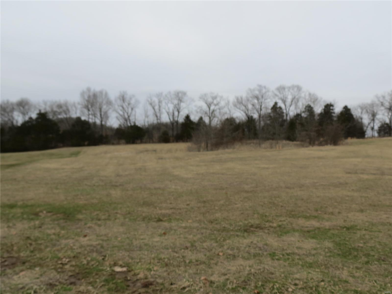 15 Polo Downs Parkway Property Photo - Marthasville, MO real estate listing