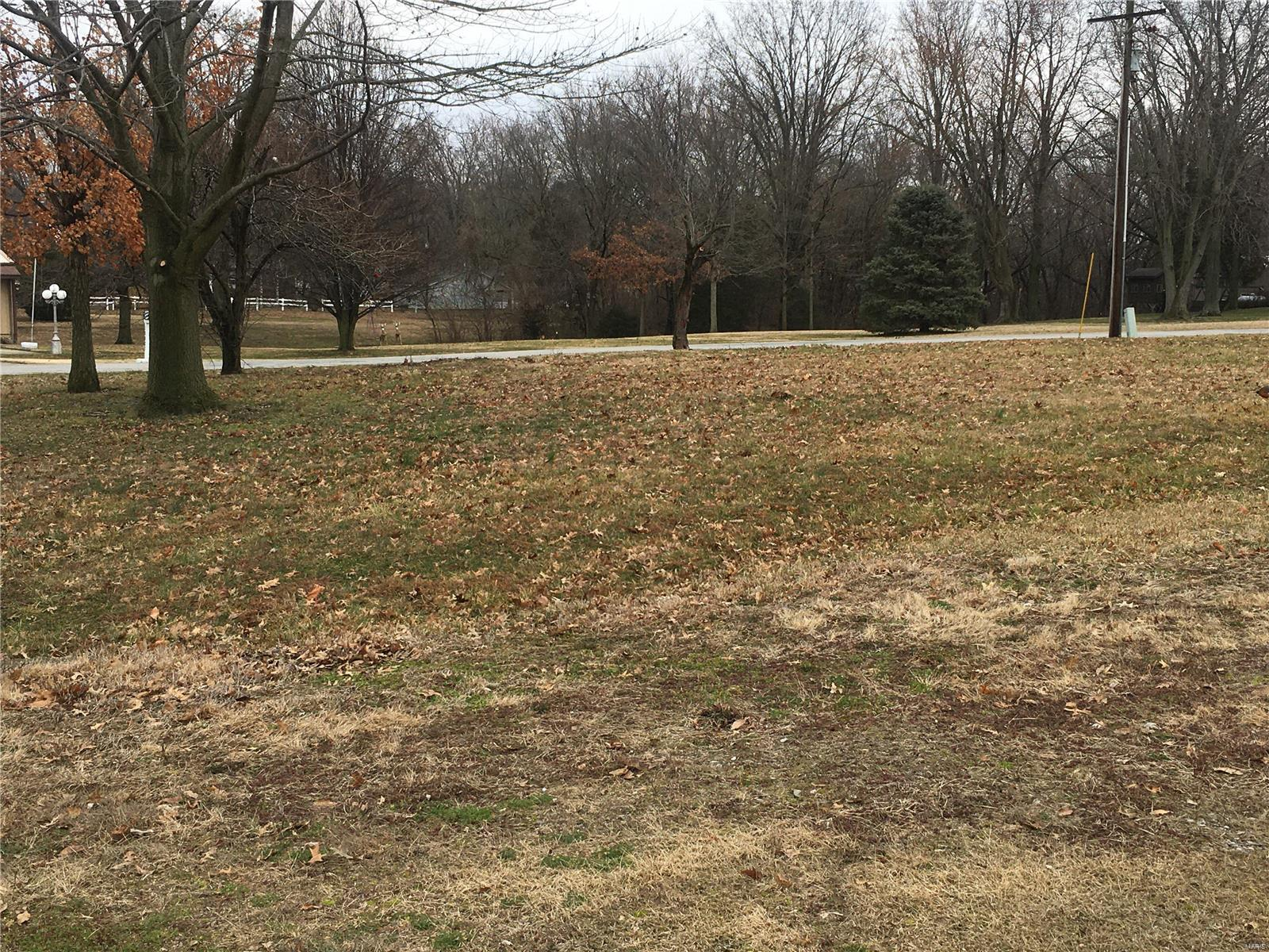 15922 Menzel Manor Drive Property Photo - Carlyle, IL real estate listing