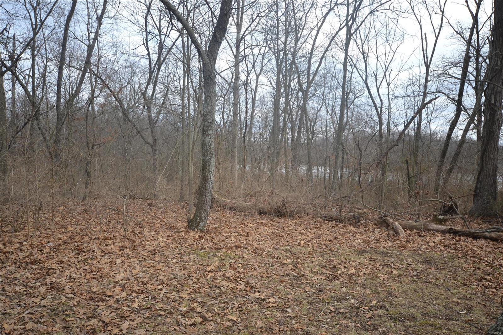 0 Poplar Road Property Photo - Coulterville, IL real estate listing