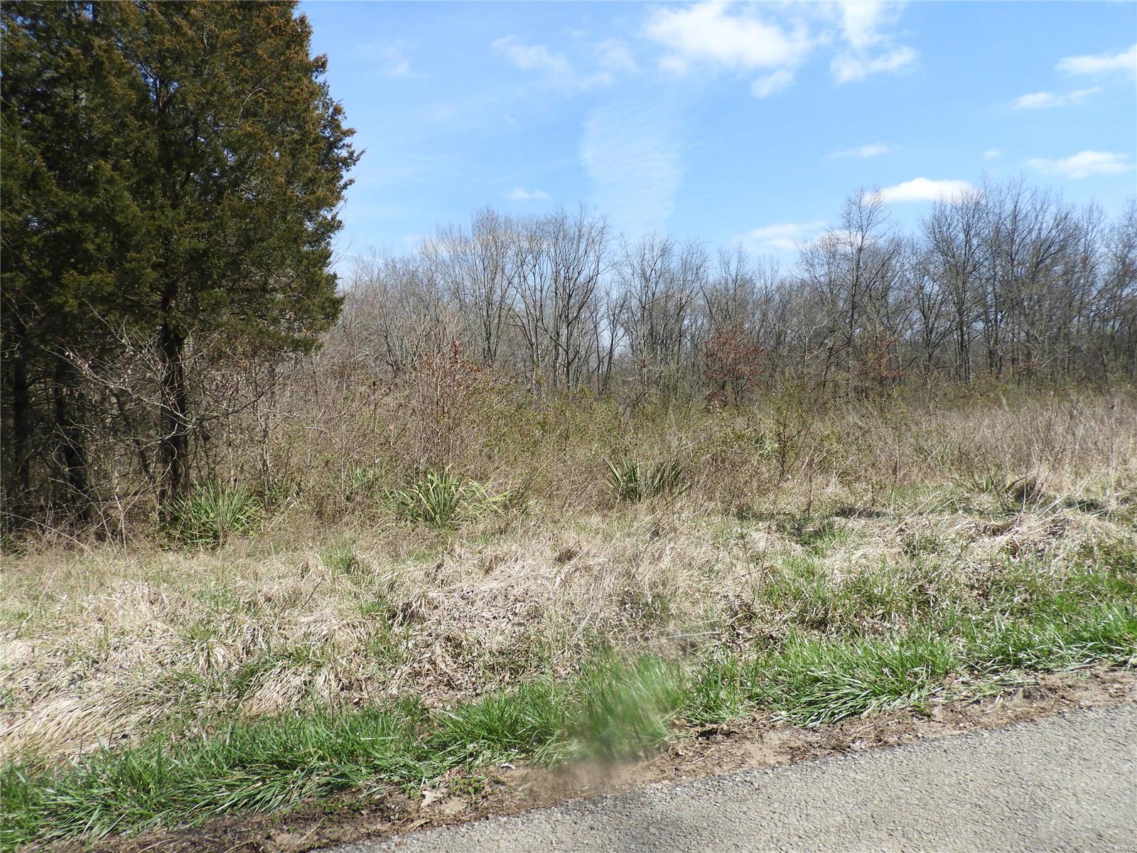 1372 Saint Louis Drive Property Photo - Bismarck, MO real estate listing