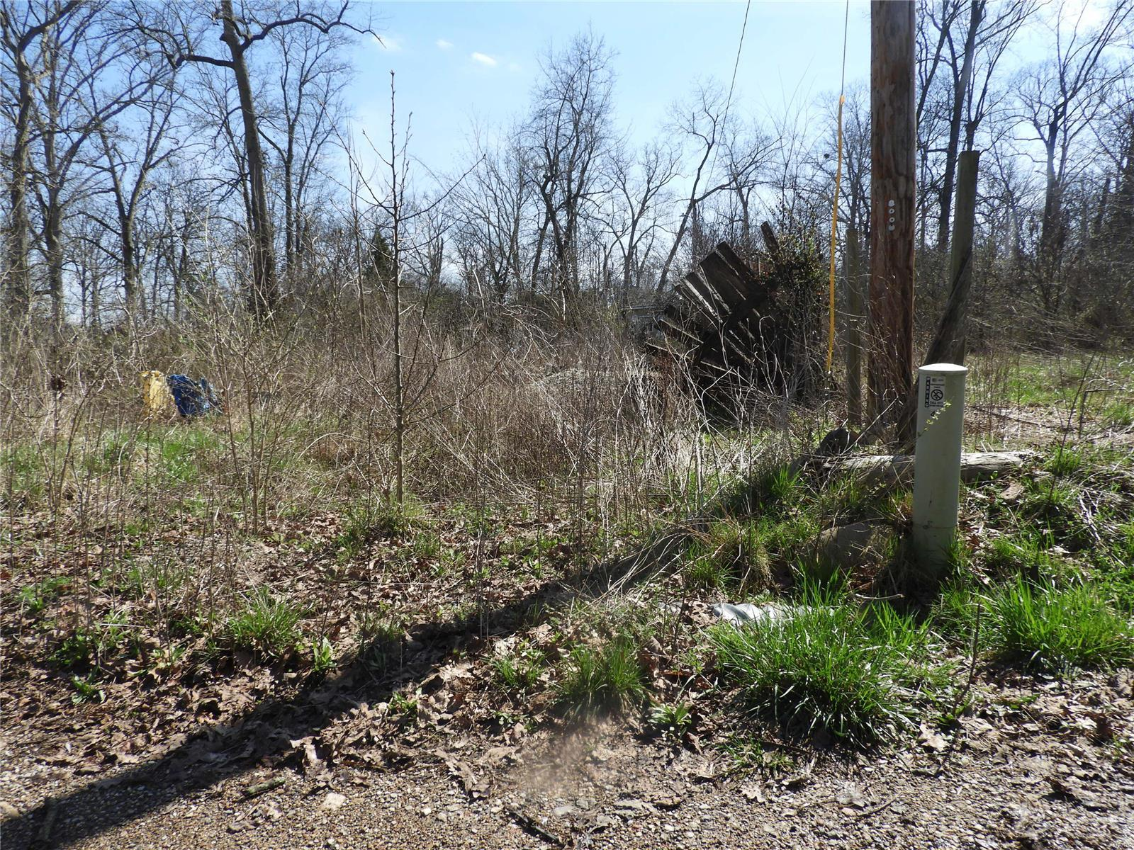 570 Joplin Drive Property Photo - Bismarck, MO real estate listing