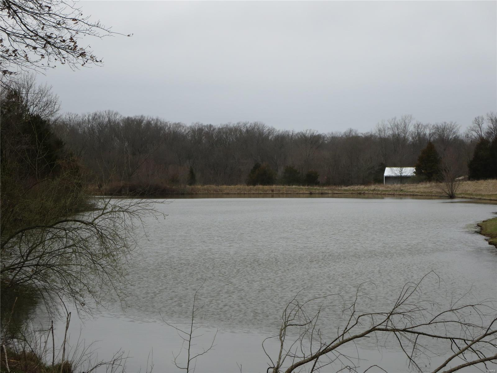 13 Squires Point Property Photo - Pittsburg, IL real estate listing