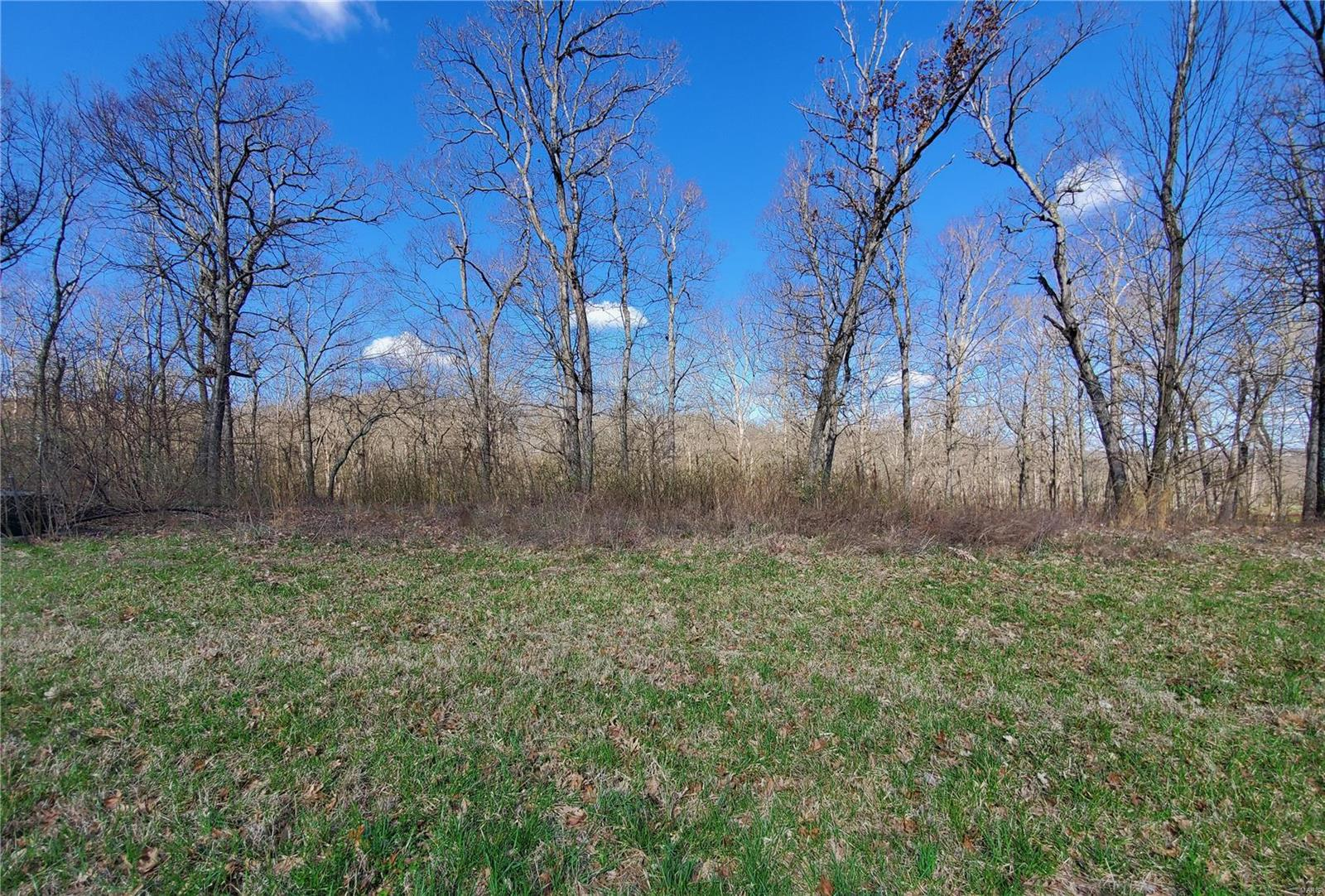 0 Woods of Sandy Creek Property Photo - Winfield, MO real estate listing