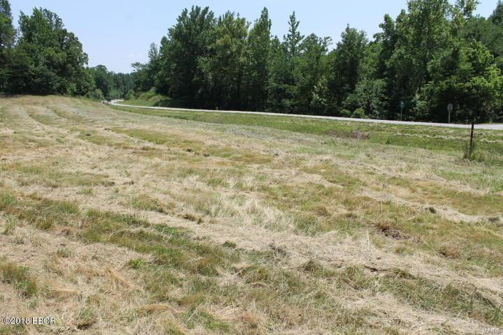 0 Hwy 127 Property Photo - Alto Pass, IL real estate listing