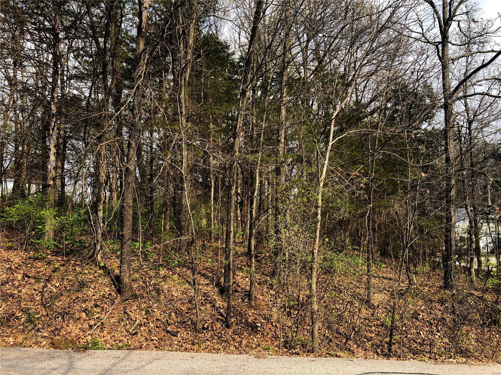 531 Mulberry Drive Property Photo - Foristell, MO real estate listing