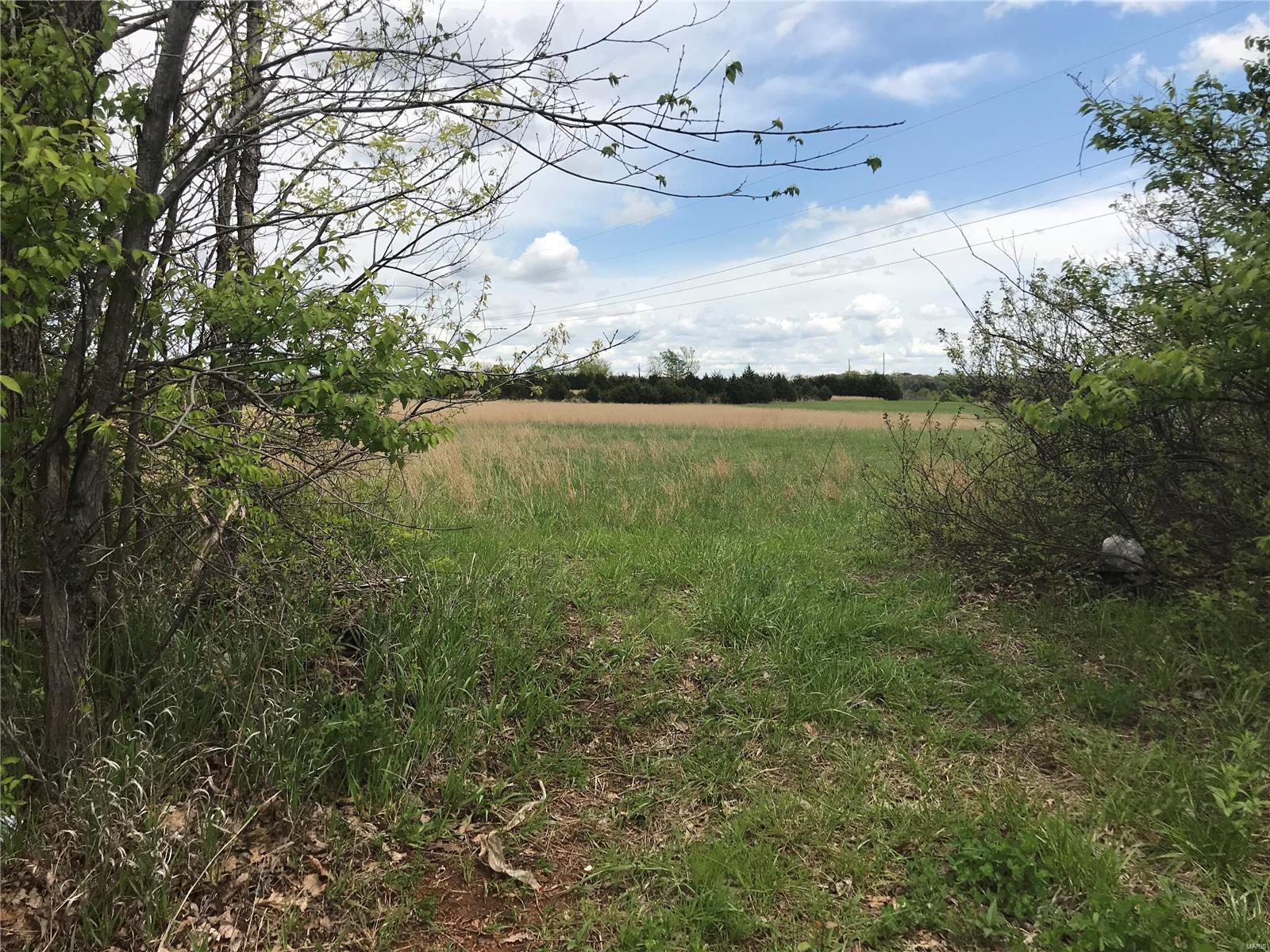 6004 Halter Property Photo - Park Hills, MO real estate listing