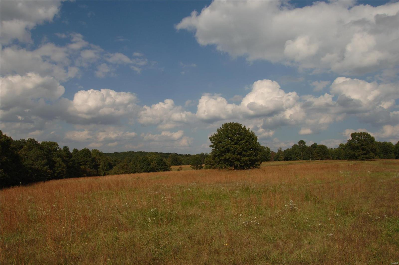 111 Lakeview Trail Property Photo - Raymondville, MO real estate listing