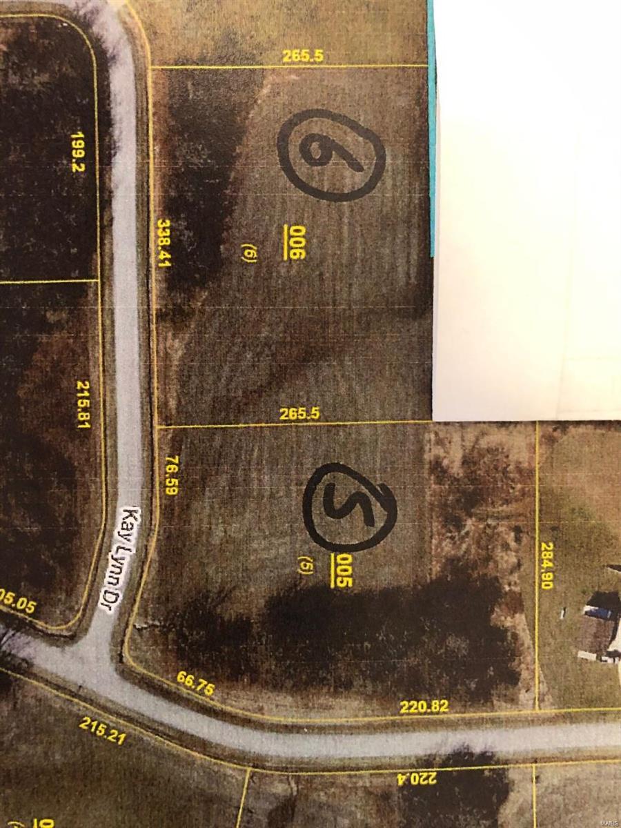 4673 Kay Lynn Drive Property Photo - Pocahontas, IL real estate listing