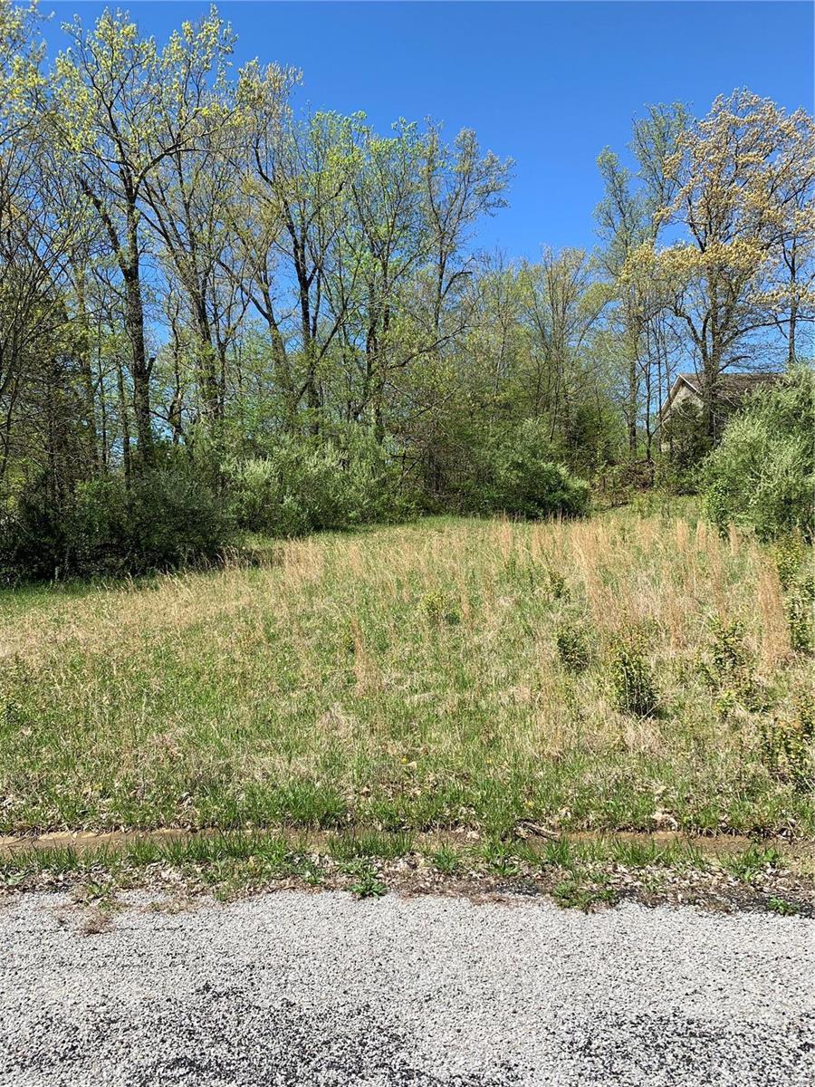1 Morgan Drive Property Photo - Murphysboro, IL real estate listing