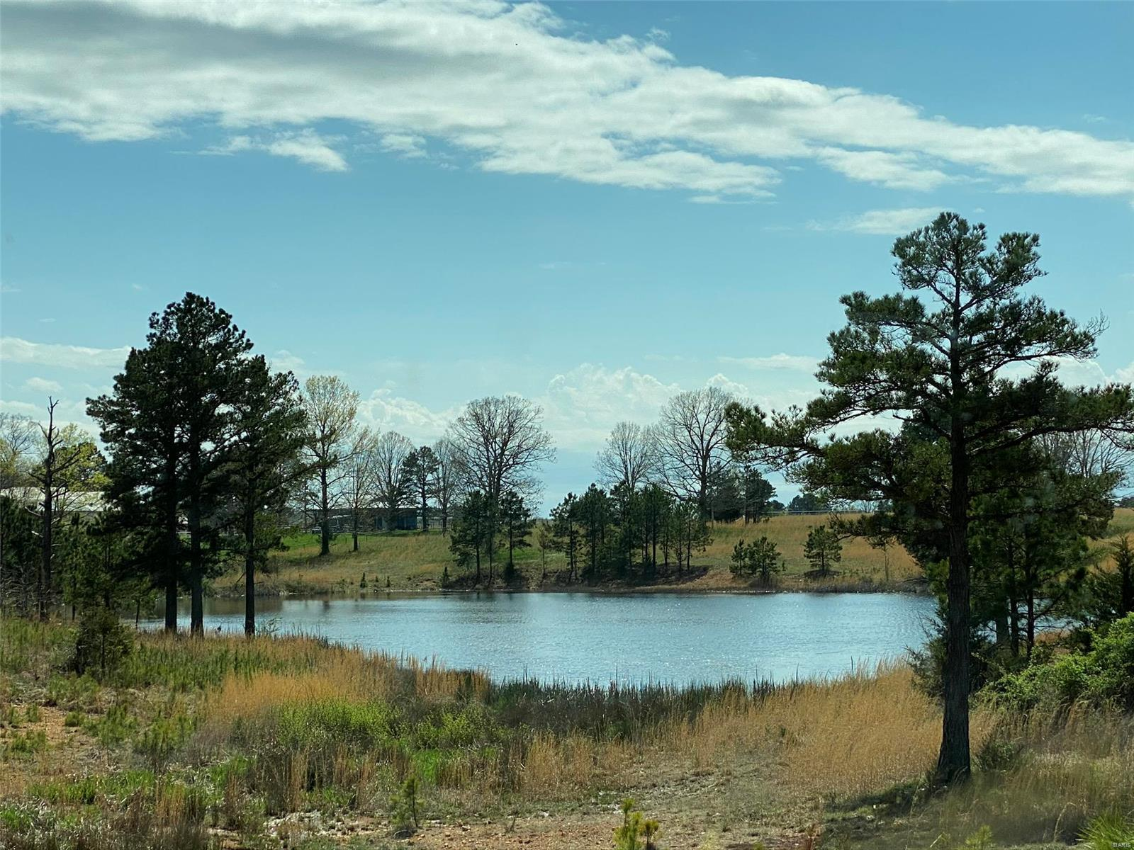115 Lakeview Trail Property Photo - Raymondville, MO real estate listing