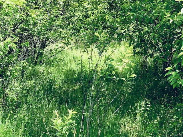 0 State Hwy 34 Property Photo - Glen Allen, MO real estate listing