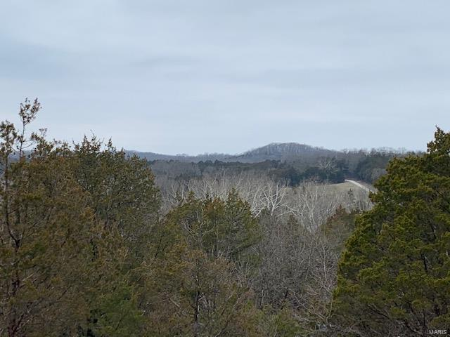 5526 Calvey Creek Road Property Photo - Robertsville, MO real estate listing