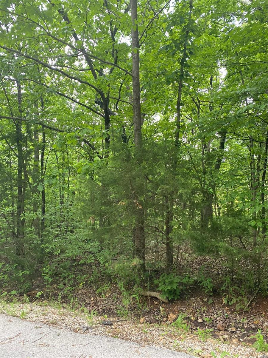 9510 Southern Belle Drive Property Photo - Hillsboro, MO real estate listing