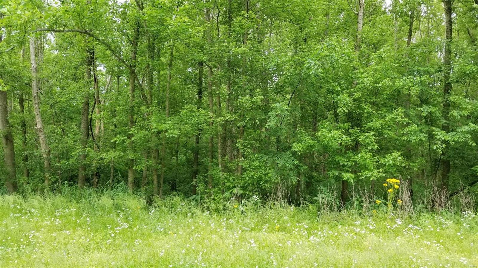 170 S Hutchins Creek Road Property Photo - Alto Pass, IL real estate listing