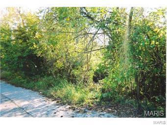 54 VETERANS (HWY E ) Drive Property Photo - De Soto, MO real estate listing