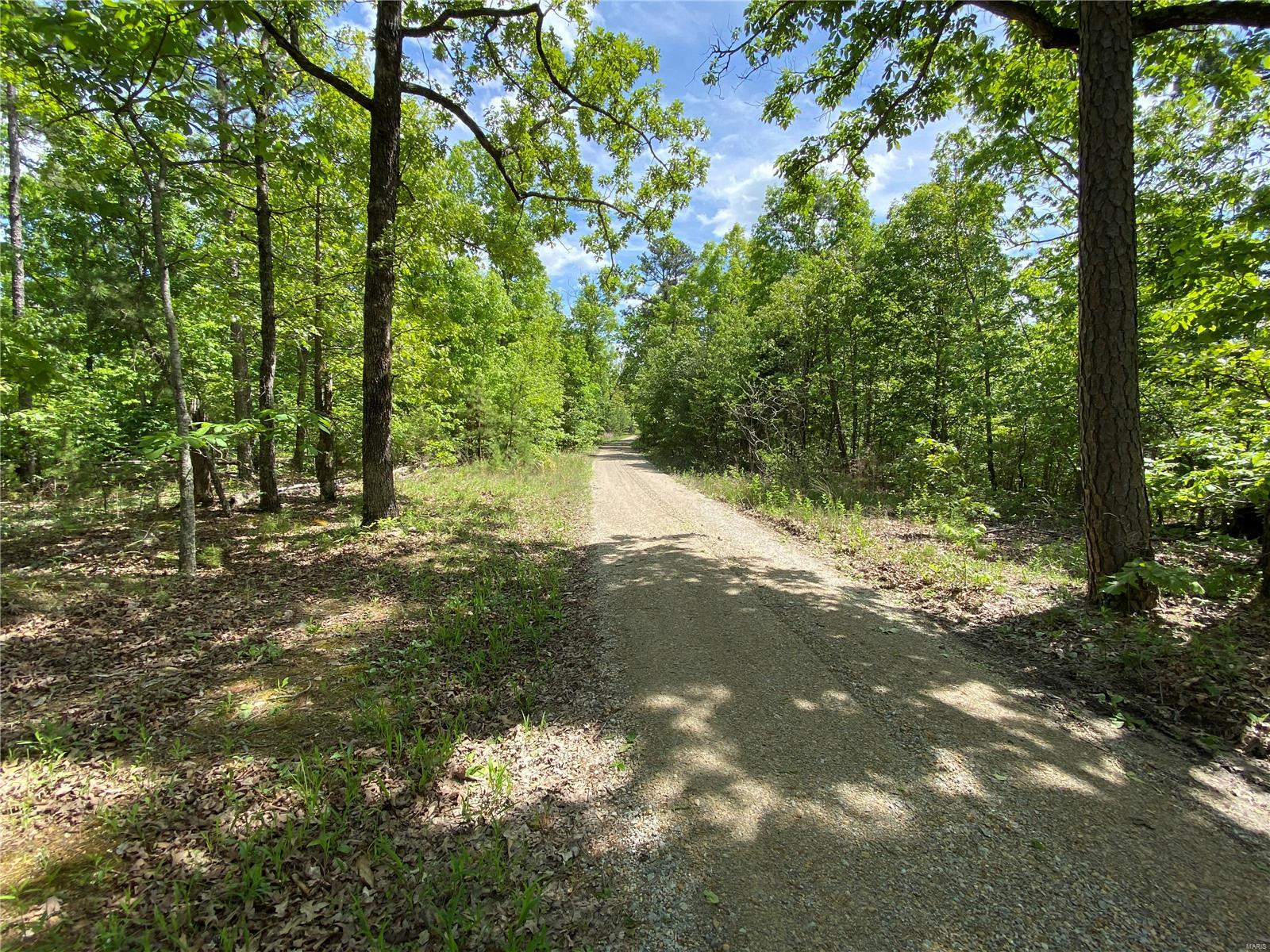 0 Country Road 304 Property Photo - Marquand, MO real estate listing