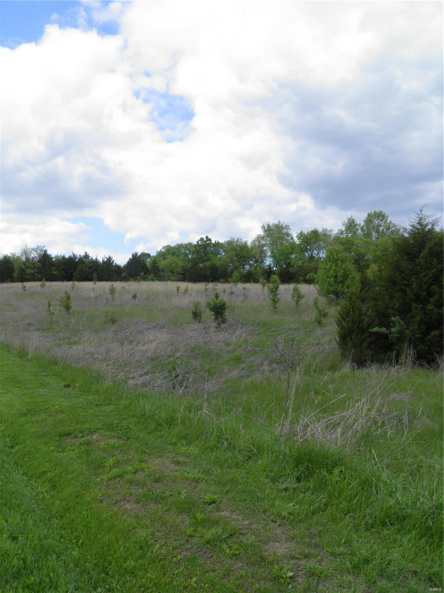 0 Lot 8 of Dry Fork Meadows Property Photo - Imperial, MO real estate listing