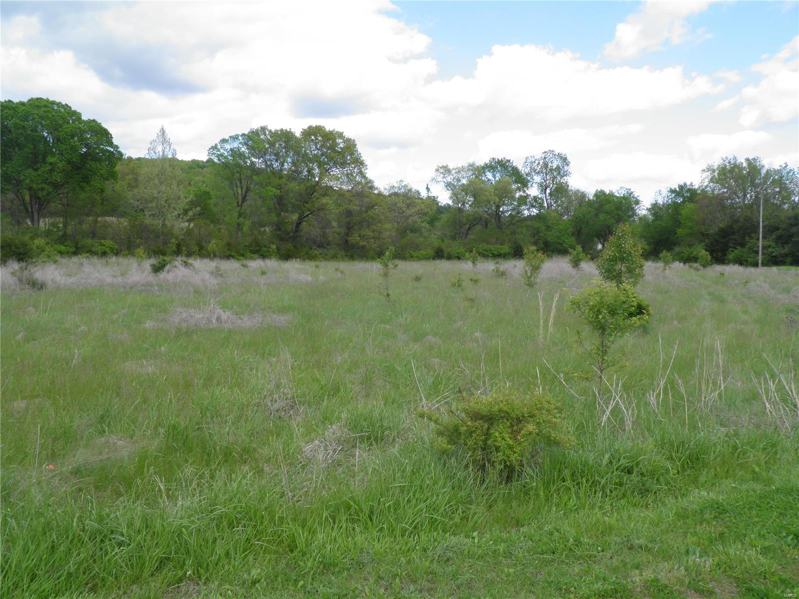 0 Lot 9 of Dry Fork Meadows Property Photo - Imperial, MO real estate listing