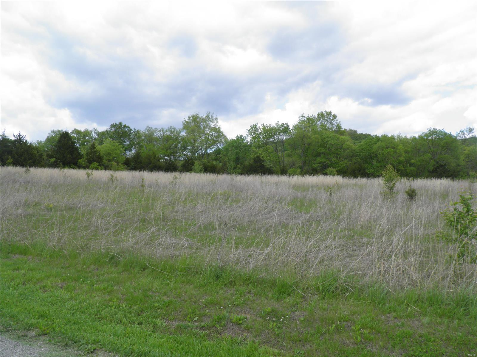 0 Lot 10 of Dry Fork Meadows Property Photo - Imperial, MO real estate listing
