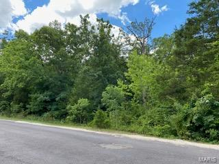 2041 Lakeshore Property Photo - Cuba, MO real estate listing