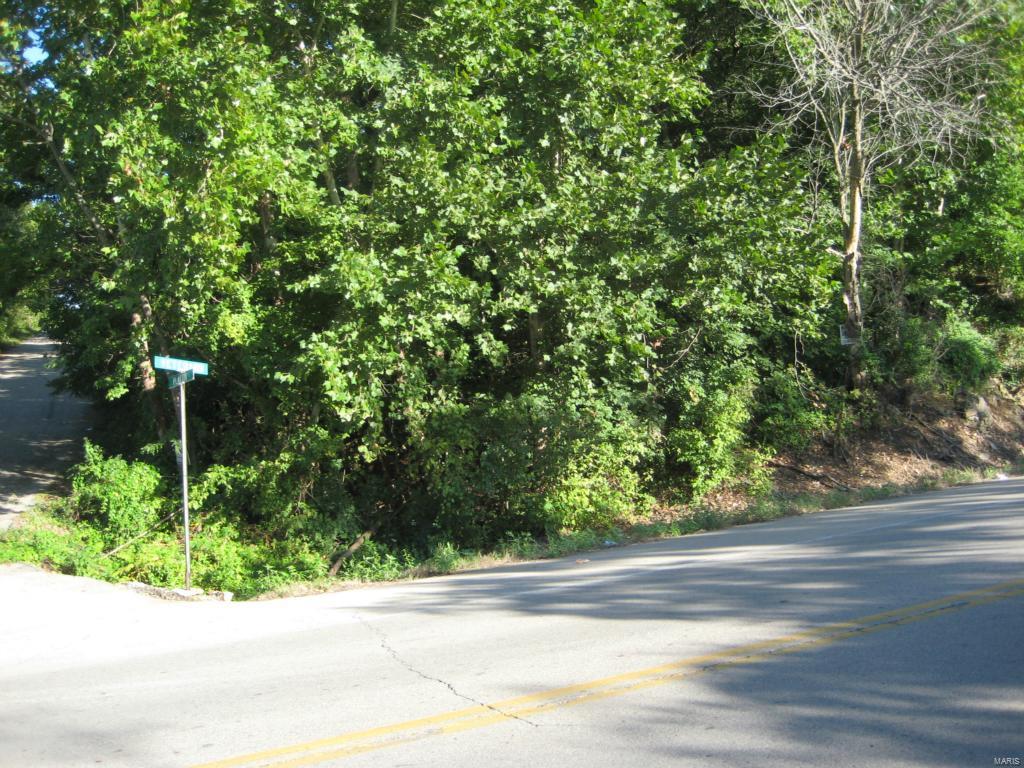 960 VETERANS (HWY E ) Drive Property Photo - De Soto, MO real estate listing