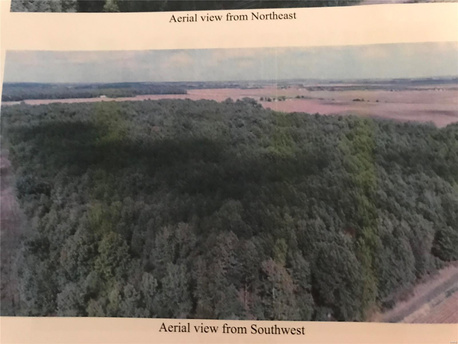 0 County Road 306 Property Photo - Advance, MO real estate listing