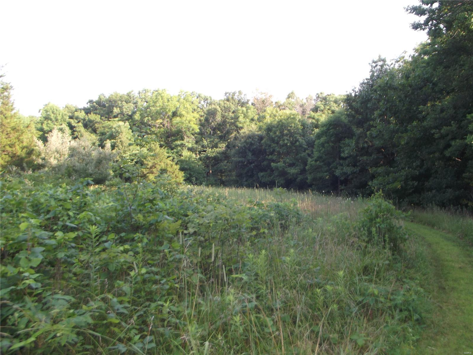 0 Hoot Owl Holler Property Photo - Monroe City, MO real estate listing