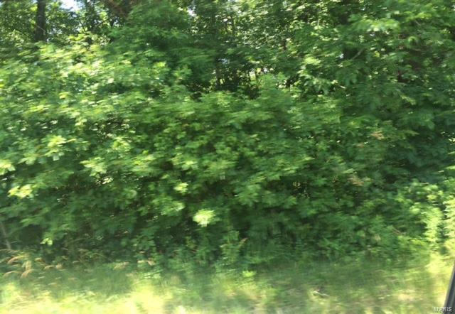0 HIGHWAY 17 SOUTH TRACT A S Property Photo - Laquey, MO real estate listing