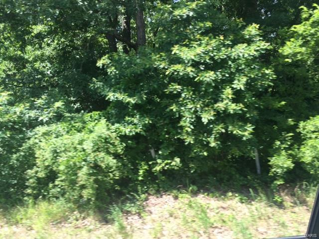 0 HIGHWAY 17 SOUTH TRACT B S Property Photo - Laquey, MO real estate listing