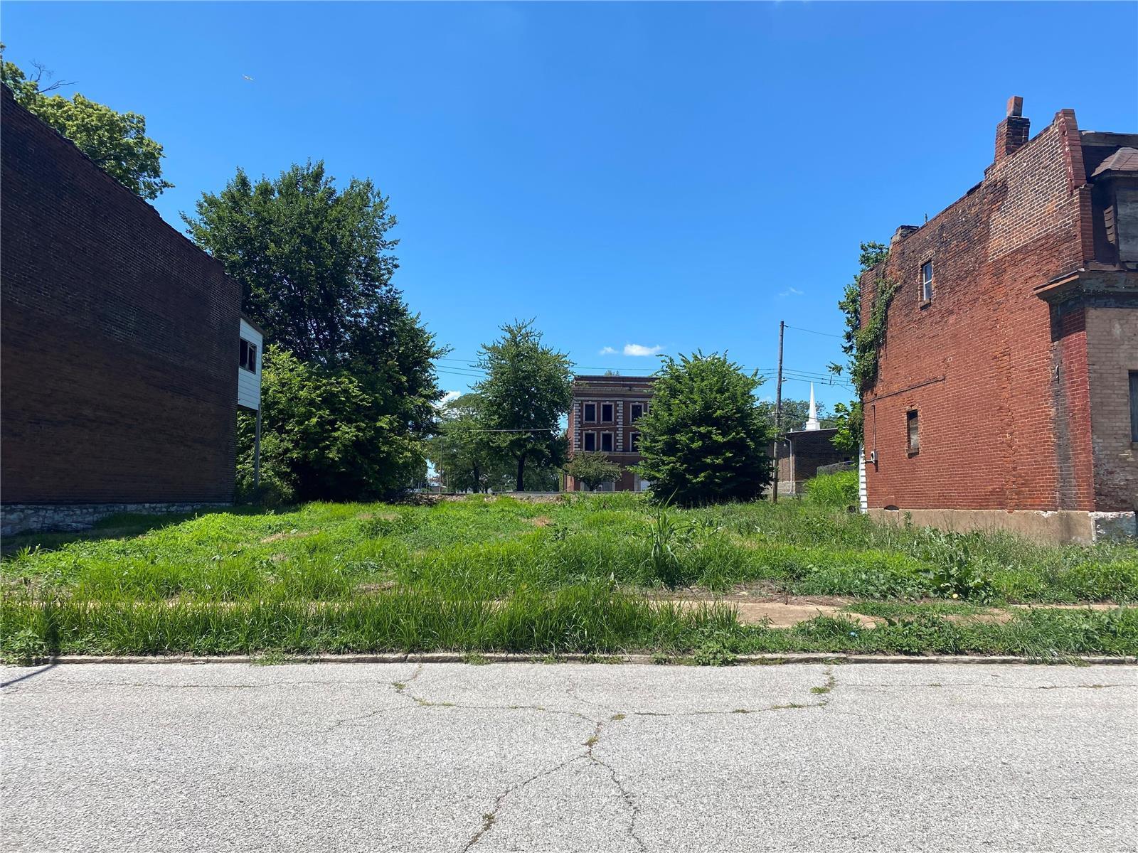 2417 Fall Avenue Property Photo - St Louis, MO real estate listing