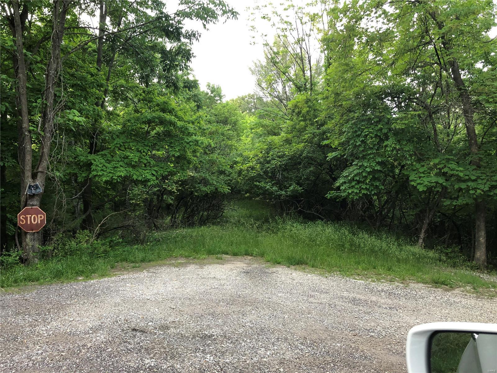 0 Franks Court Property Photo - Byrnes Mill, MO real estate listing