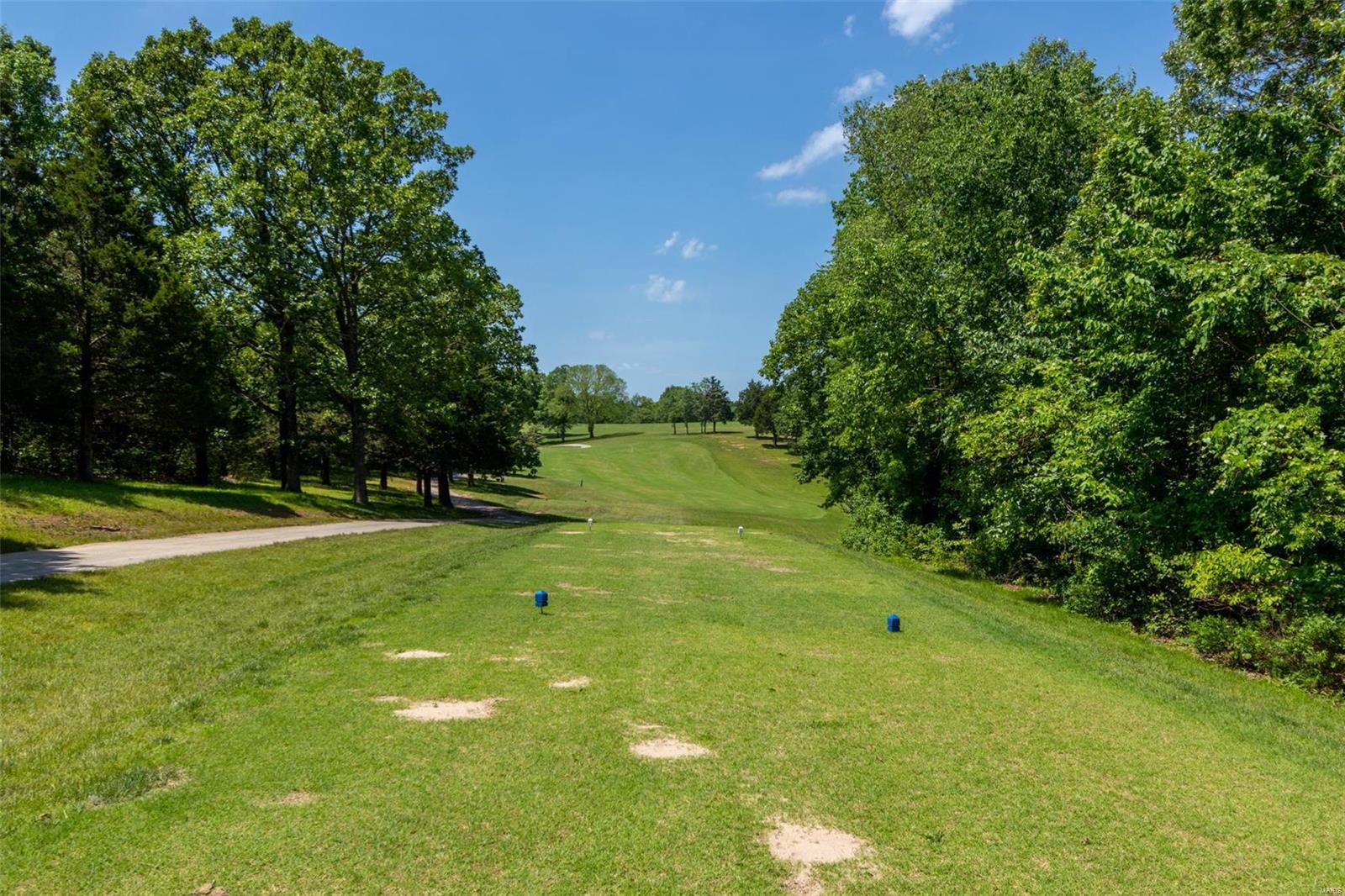 10132 Lake Ridge Drive Property Photo - Hillsboro, MO real estate listing