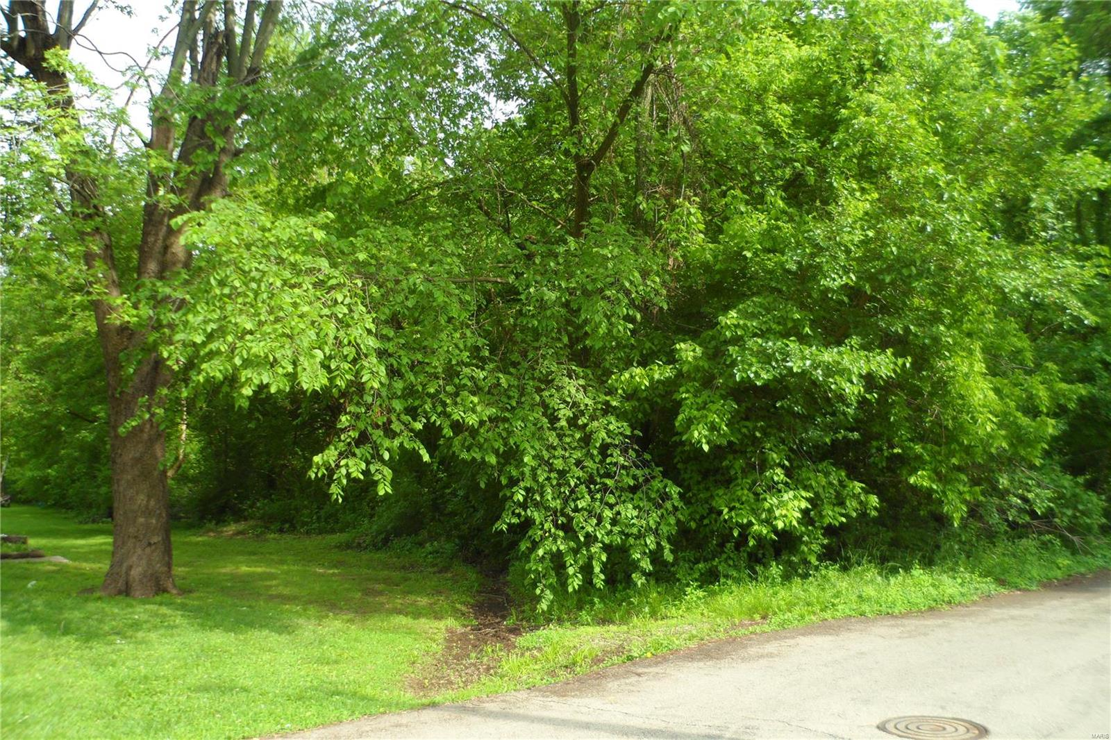 0 Kirby Property Photo - Desloge, MO real estate listing