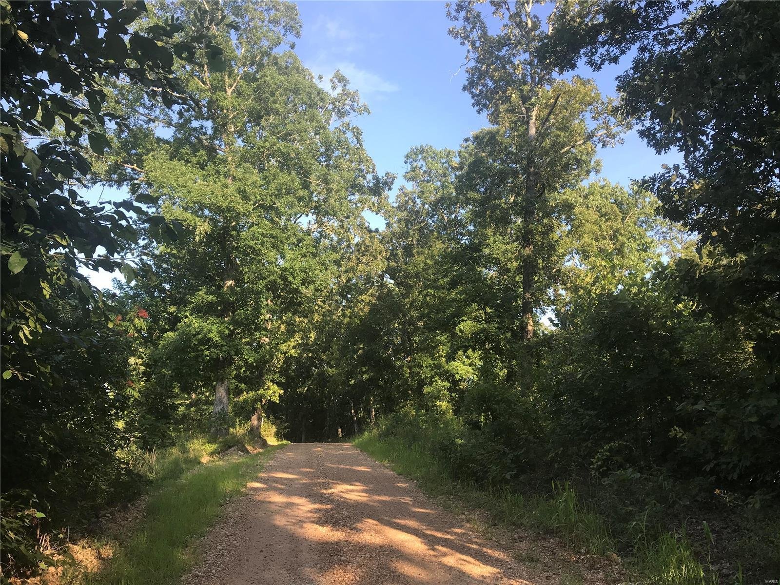 0 Bollinger County Rd. 840 Property Photo - Marquand, MO real estate listing
