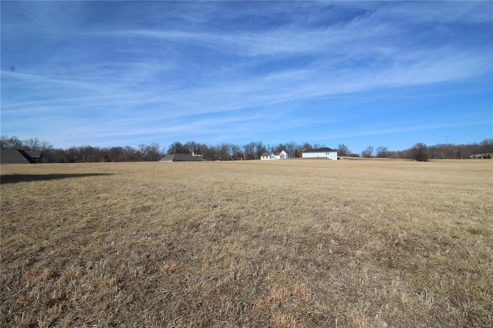 0 Old Bloomfield Property Photo - Vienna, IL real estate listing