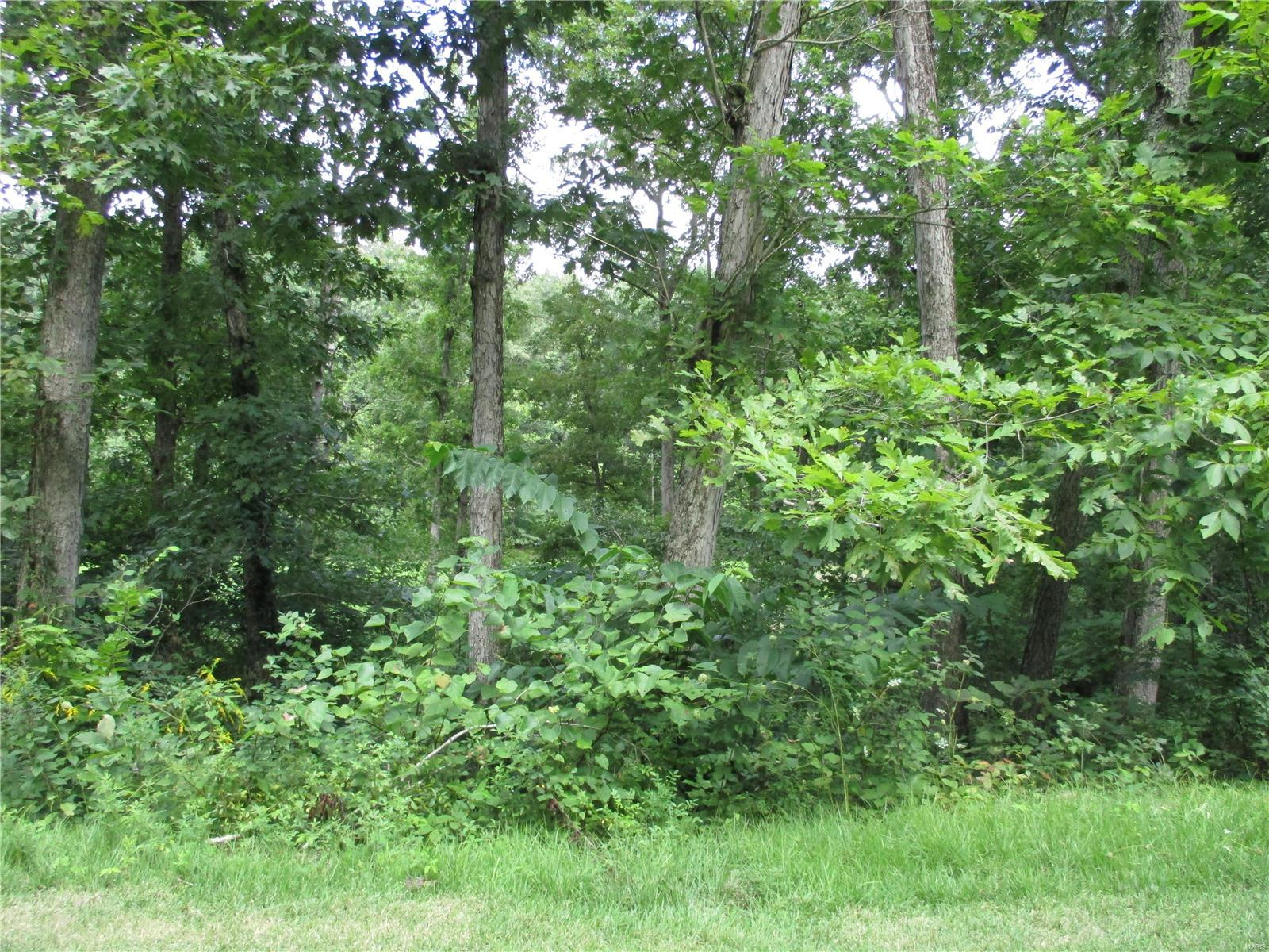 2 Deer Trail Property Photo - Fredericktown, MO real estate listing