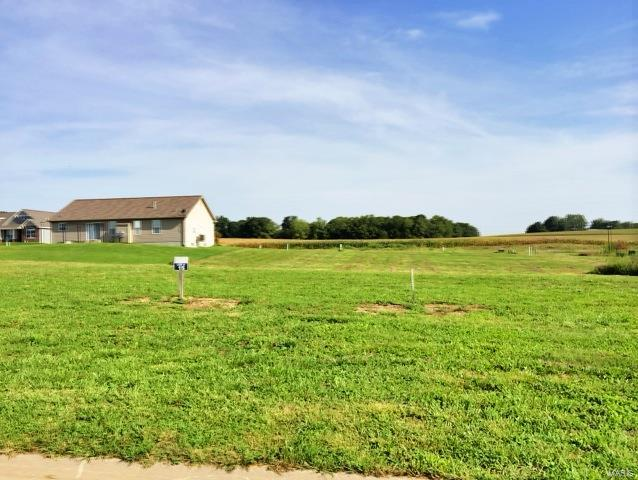 517 Bluff Meadows Drive Property Photo - Valmeyer, IL real estate listing
