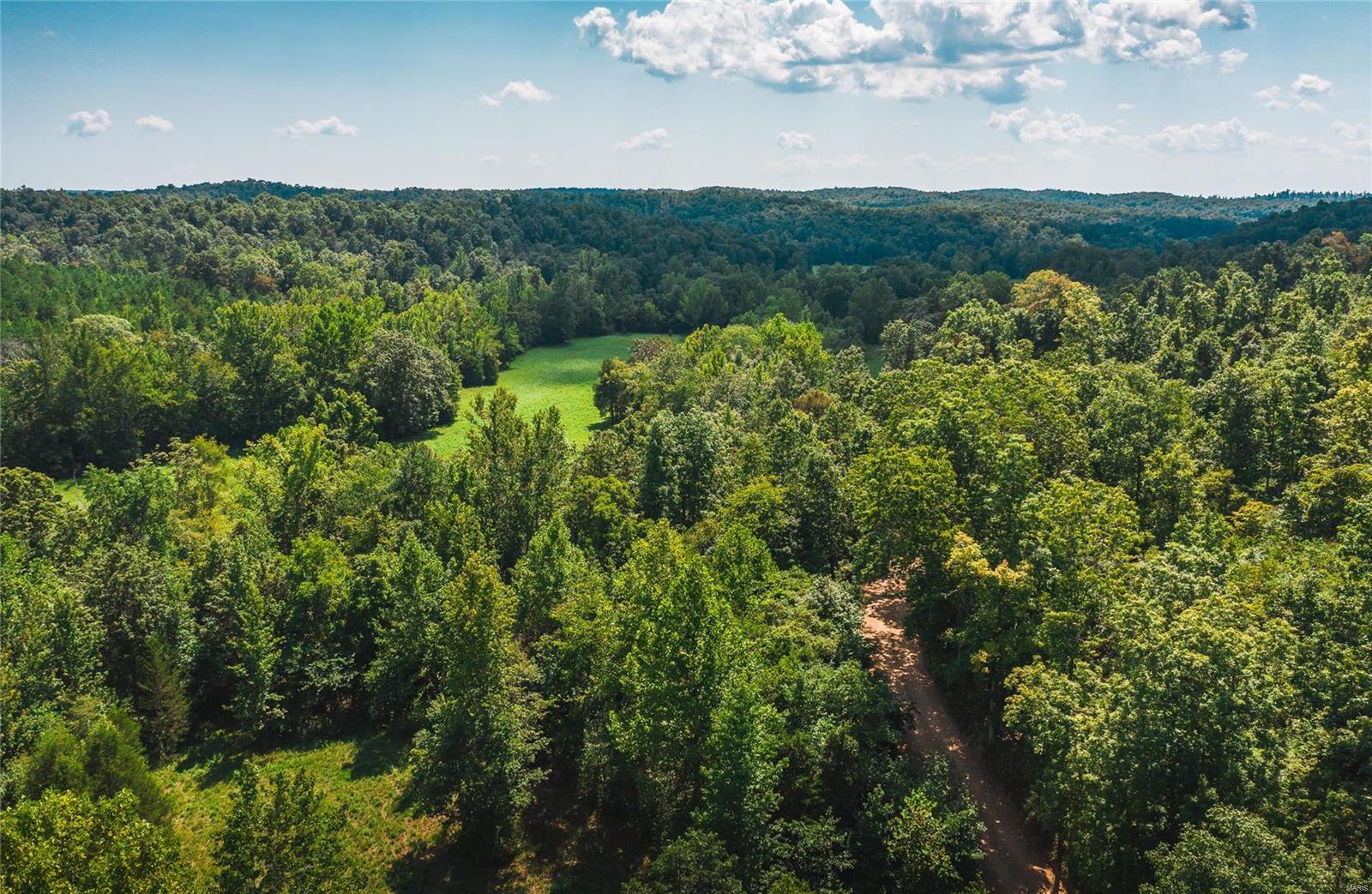 0 Wayne County 220 B Property Photo - Silva, MO real estate listing
